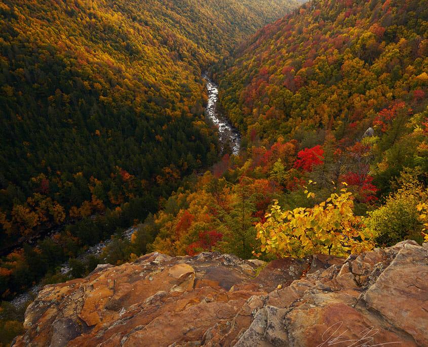Blackwater Falls Fall Foliage