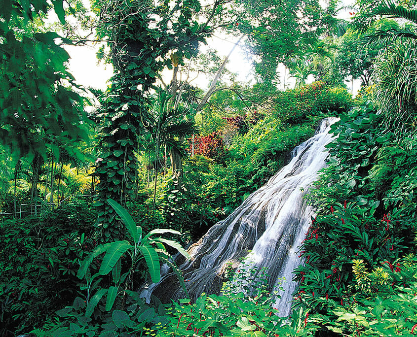 Jamaican Waterfall