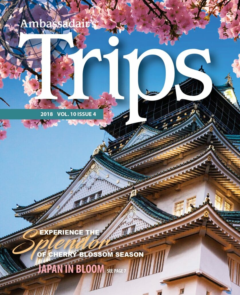 Trips Magazine Volume 10 Issue 4
