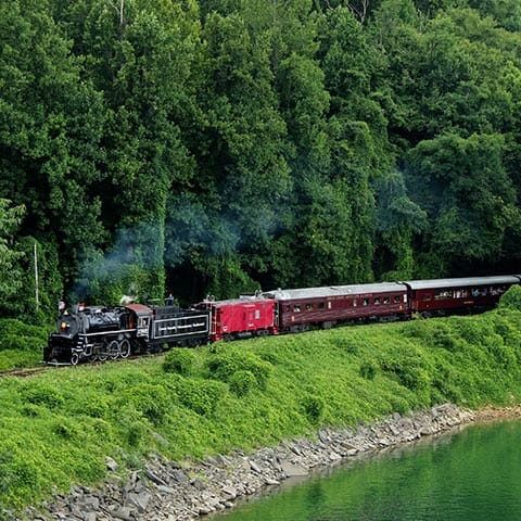 Smoky Mountains by Train